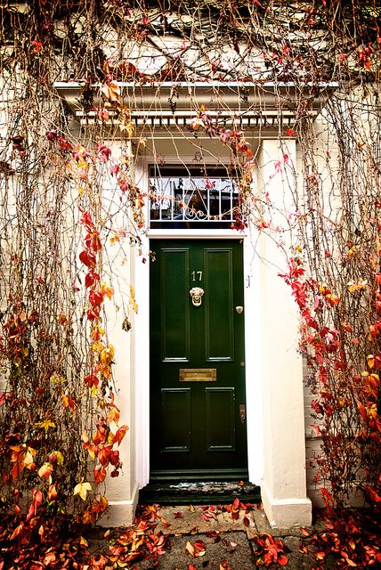 Foliage in Putney, London: Foliage in Putney, London Front Door Colours