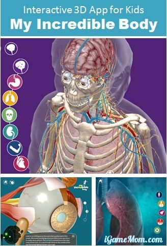 Interactive 3D app for kids teaching about human anatomy, with 3D pictures and videos.