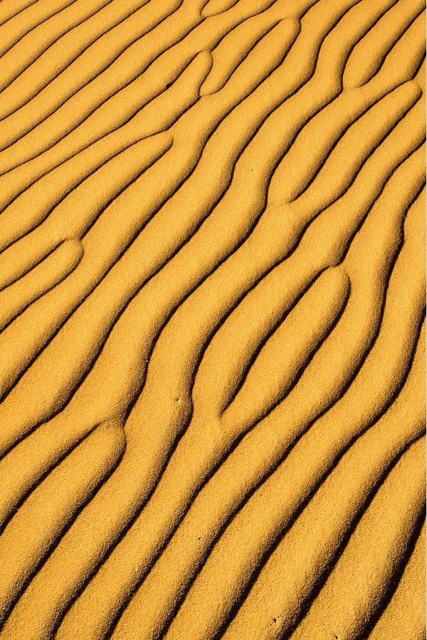 Kalahari Desert - Africa. One of 10 largest desert in the world