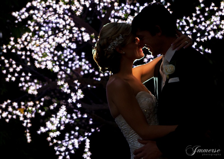 stunning fairy tree lights. this is the photo you dream of in your album