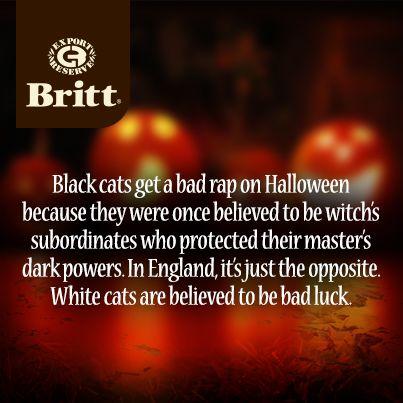 cafe britt halloween facts - Crazy Halloween Facts