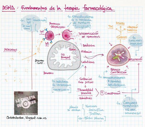 La Chuleta de Osler: Neumología: ASMA - Fundamentos de la terapia farmacológica