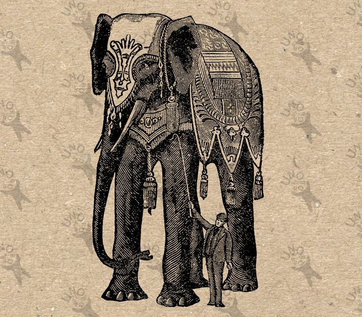 Vintage image Elephant Circus picture Instant Download printable clipart digital graphic for fabric transfer, t-shirts, bags etc HQ 300dpi by UnoPrint on Etsy