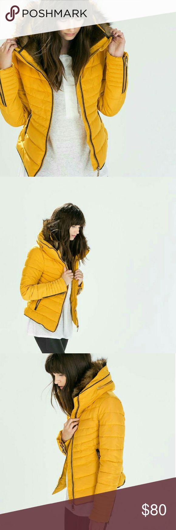 PRICE DROPEnds Tonight! ZARA ZARA Puffer Jacket. Has hidden hoodie inside zipper compartment. Zara Jackets & Coats Puffers