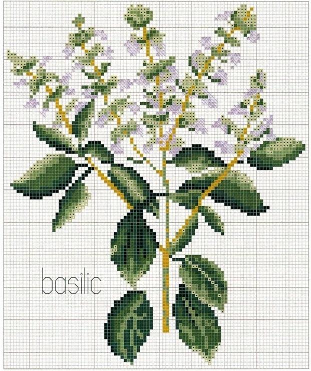 Borduurpatroon Bloemen - Planten *Cross Stitch Flowers - Plants ~Kruiden~