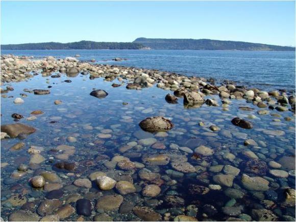 Denman Island , Vancouver Island , BC , Canada