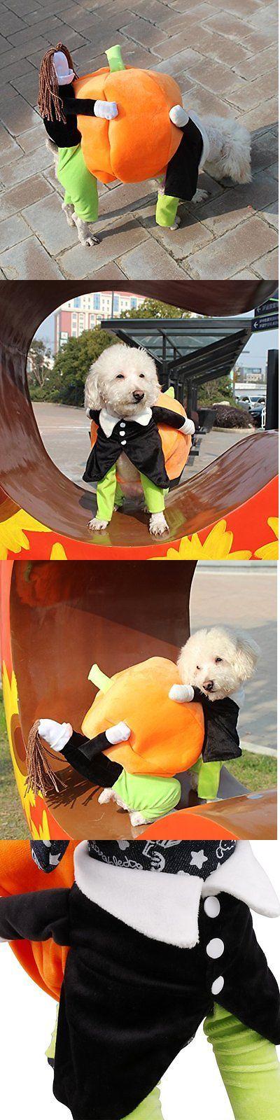 Costumes 52352: Iiniim Pet Dog Cat Carrying Pumpkin Halloween Costume Fancy Party Jacket Apparel BUY IT NOW ONLY: $32.97