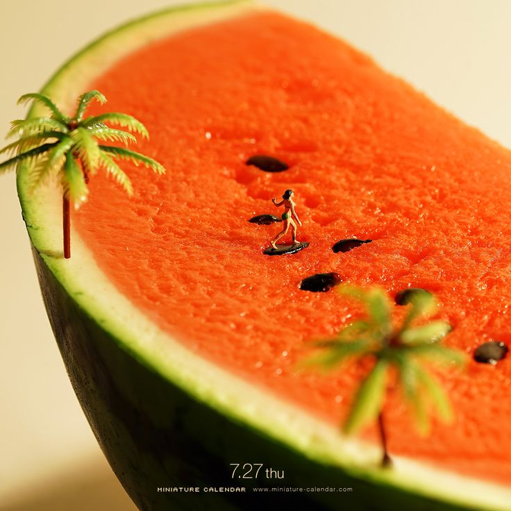 """Seed Surfer -    Holy land of seed riding.    Today is """"Watermelon day""""."""