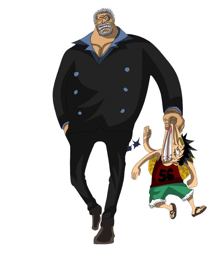 one piece vice amiral bastille
