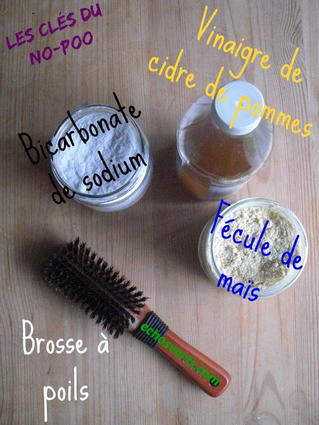 Produits No Poo- fécule- vinaigre- bicarbonate- brosse- échos verts