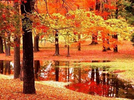 En güzel sonbahar resimleri