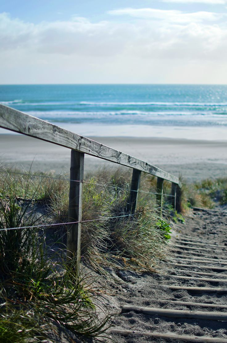 Mount Maunganui - Tay Street Beach Cafe, The Mount, Mills Reef Restaurant, Mount Bistro, Bobby's Fresh Fish Market, Fixation Coffee