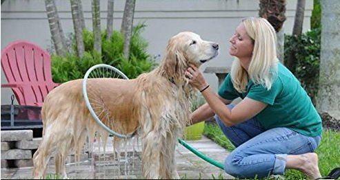 Eco e bio Shampoo per la cute e il pelo del cane. Da oggi possiamo decidere di avere un approccio più naturale anche per la cura del pelo, cute e mantello, di seguito una lista di detergenti naturali che proteggono e rispettano la cute del nostro cane, privi di tensioattivi ...