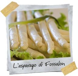 asparagi bianchi di Fossalon Italy