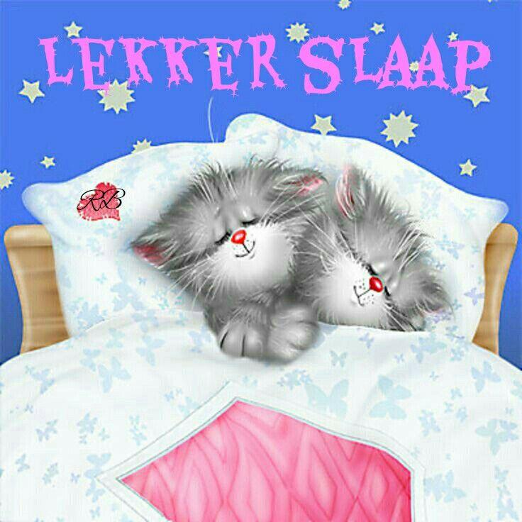Lekker slaap