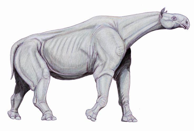 prehistoric land walrus - Google Search