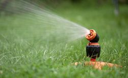 How Often should you water your lawn?  http://mrlandscaper.ca/how-often-should-you-water-your-lawn/