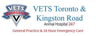 Dr. Mitelman of VETS Toronto speaks about Parvovirus & Puppy Samson was happy to join in on the conversation.