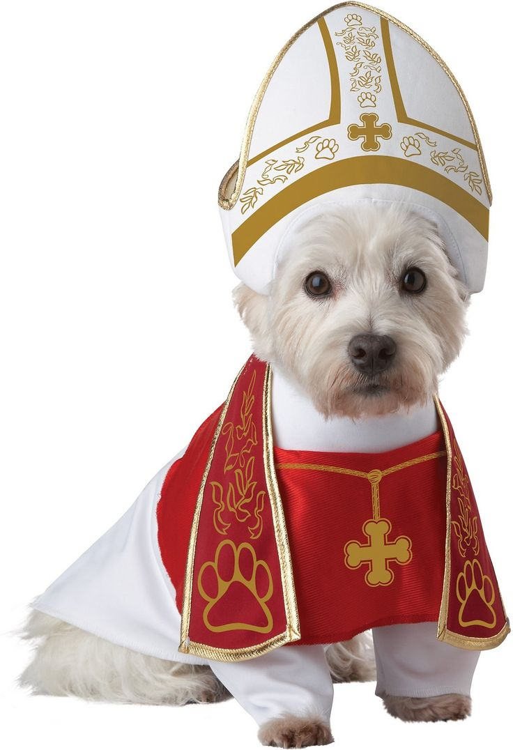 Adorn your blessed hound in robes that befit his esteemed position with the California Costumes Holy Hound Pope Dog Costume. This head-turning, high-quality pet costume is an officially-licensed product of Animal Planet. Featuring a printed miter headpiece and a printed robe with detailed stole, this adorable costume will be revered by everyone he meets. A convenient velcro closure on the robe and elastic strap on the headpiece makes it a snap to get them on and off. This adorable outfit is…