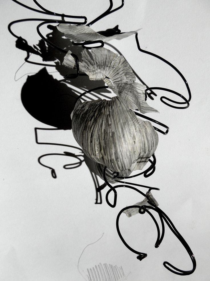 Still life- onions on The Loop