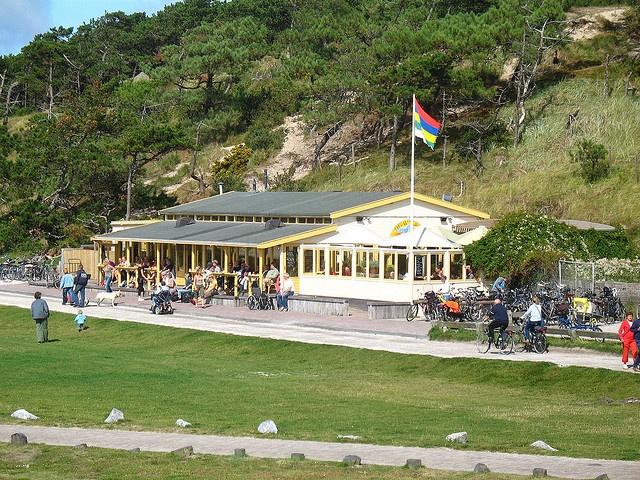 best cafe netherlands walvis terschelling