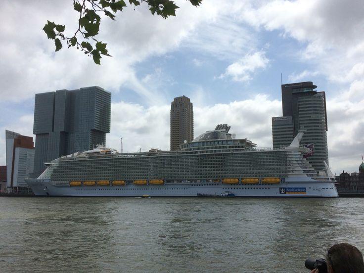 Harmony of the seas, Rotterdam