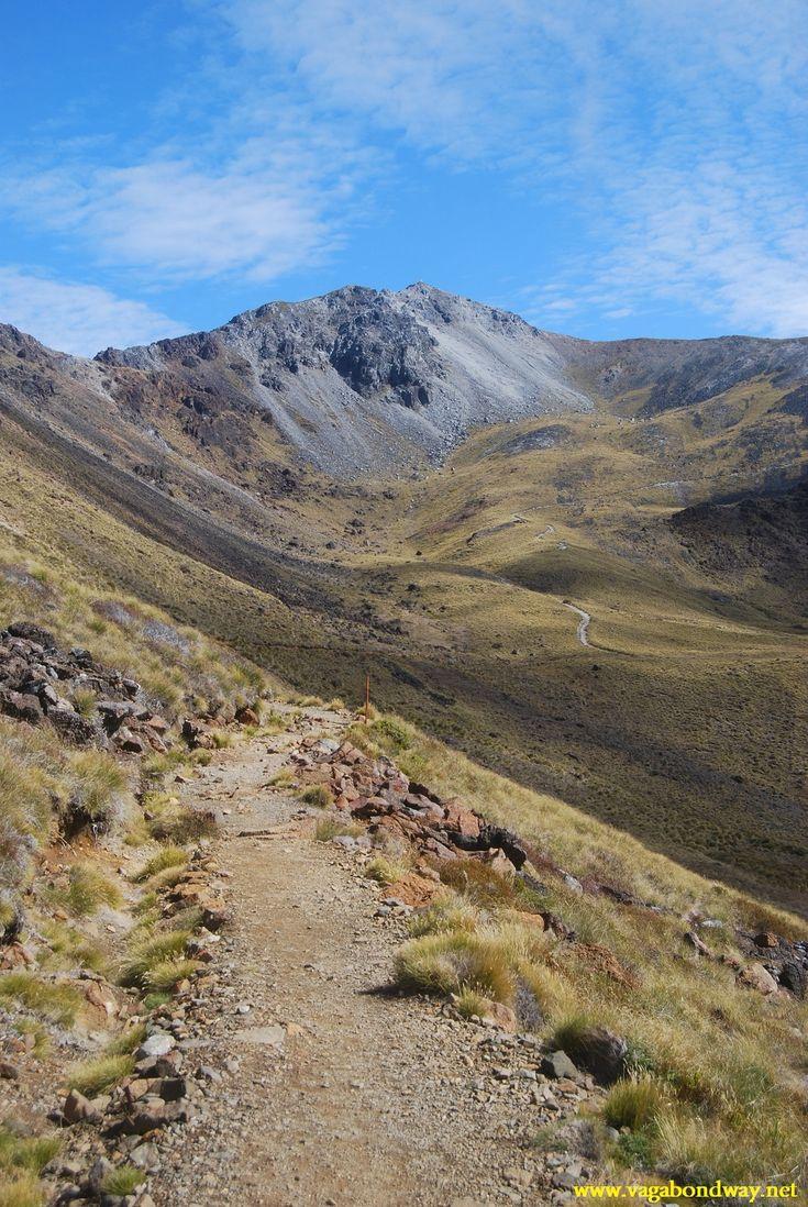 mountain views, Kepler, NZ #newzealandwalkingtours #newzealandwalkingtracks http://newzealandwalkingtours.com