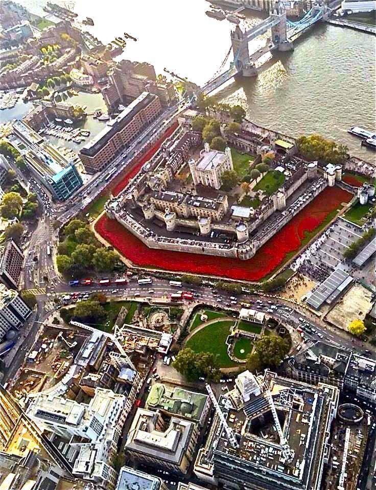 Vista aérea del puente y la torre de Londres, con las amapolas rojas conmemorativas de los caídos en la 1a. guerra mundial, en el año 2014.