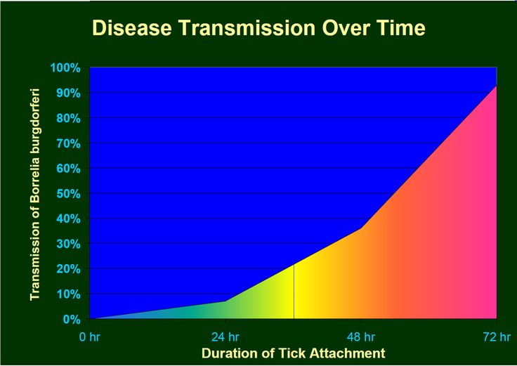 Tick transmission times--does 24, 36 or 48 hours give you a free pass?