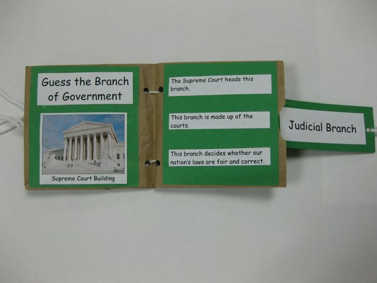 3 Branches of Government Minibook