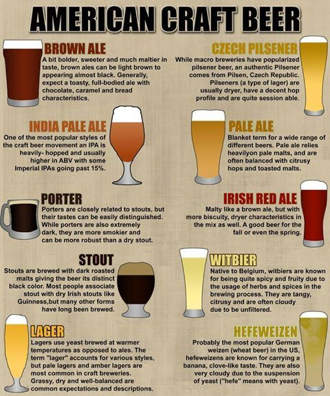 Do You Know The Differences? #Beer #Beer101 #LexHopHeads