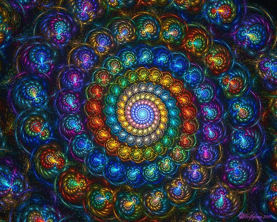 Shell spiral fractal