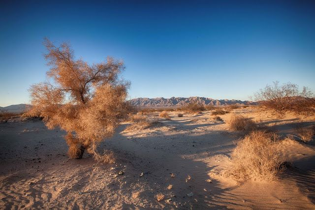 Spare Parts and Pics: Searching for an Old Desert Mine (Color Version)