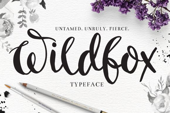 """""""Wildfox"""" Typeface-Hand drawn font by DrawBabyDraw Designs on @creativemarket"""