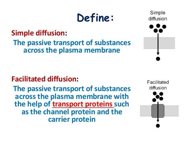 BIOLOGY FORM 4 CHAPTER 3   MOVEMENT OF SUBSTANCES ACROSS THE PLASMA U2026