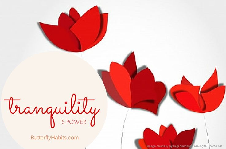 Tranquility is Power. Reignite the Butterflies in your Tummy and get the 3 Basic Tools Most Women Miss. Free Instant Access at http://butterflyhabits.com  -                                            #butterflyhabits #quote #love