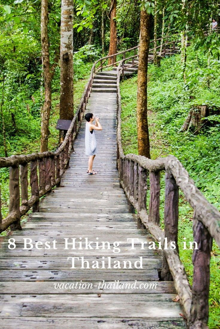 Great Hiking Guide To The Best Trails In Thailand We Cover Tab Kak Hang Nak Nature Trail Doi Chia Thailand Vacation Thailand Travel Inspiration Hiking Trails
