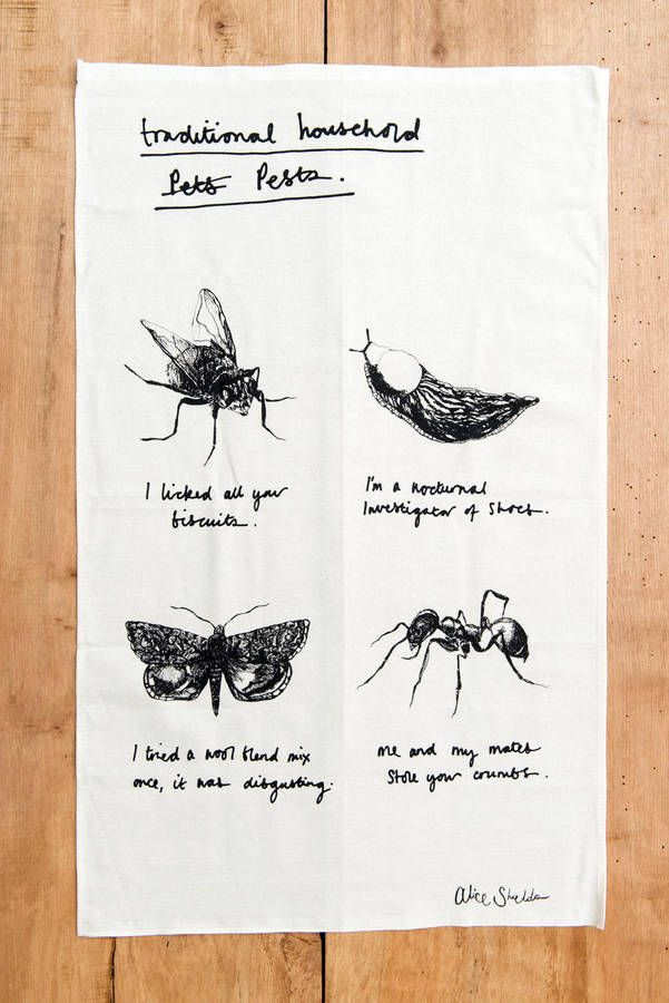 Introducing the 'Traditional Household Pests' tea towel. The closest you'll ever really want to get to a slug (let's be honest).In Homage to all those pesky insects that freqent our kitchens, bathrooms and wardrobes, this cotton tea towel is sure to brighten up any (hopefully) insect free kitchen. Highly recommended for drying up dishes, mopping up the odd spillage and generally making your kitchen look super exciting. Also tried and successfully tested at diffusing smoke alarms when the…
