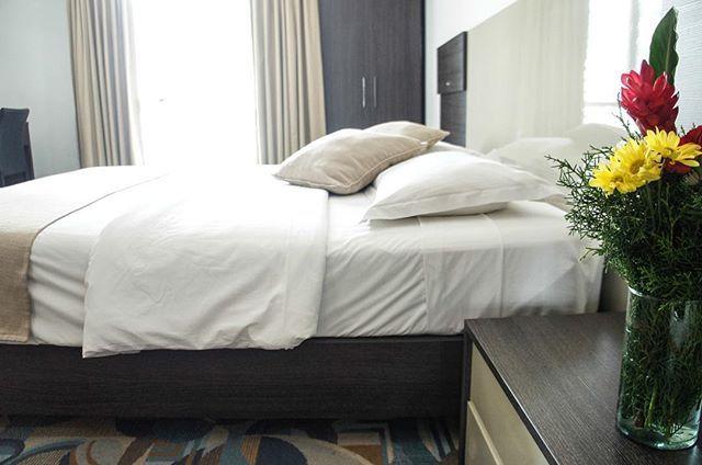 ¿A quién no le encanta despertar en una cama comodísima y saber que tiene un gran día por delante? by hotelalexccs. tourism #travel #igerscaracas #venezuela #turismo #trotamundos #instatravel #caracas #luxury #travelinspo #fun #igersvenezuela #hotelalex #travelgram #photooftheday #viajes #hotel