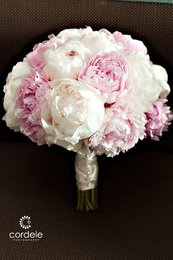 Pink and White Peonies Peony flowers, wedding flowers, 花材や量は変わってきますが、こんなお色の小さいブーケバージョン。ホルダーのリボンを長くして椅子に結びます。