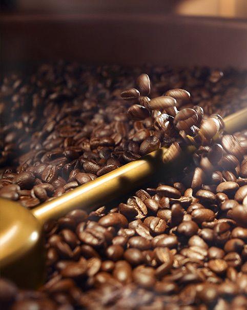Βιοκαύσιμα από … καφέ! Read More: http://www.solino.gr/wordpress/βιοκαύσιμα-από-καφέ/