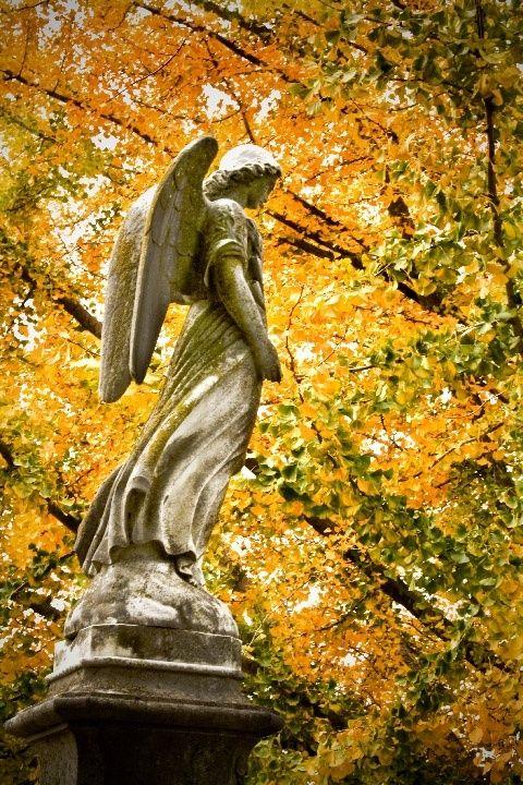 Ginkgo angel. Elmwood Cemetery, Memphis, Tennessee, photo by Paula Cravens.