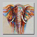Handgeschilderde Dieren / POP Olie schilderijen,Modern Eén paneel Canvas Hang-geschilderd olieverfschilderij For Huisdecoratie
