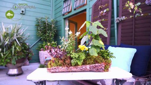Create a Wild Forest Centerpiece
