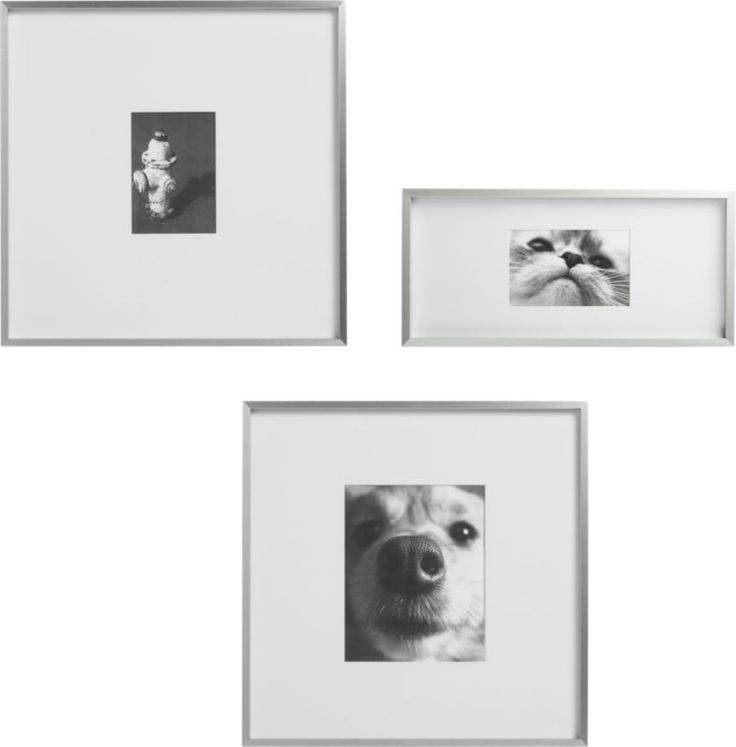 gallery brushed silver picture frames stand on nice photos and galleries
