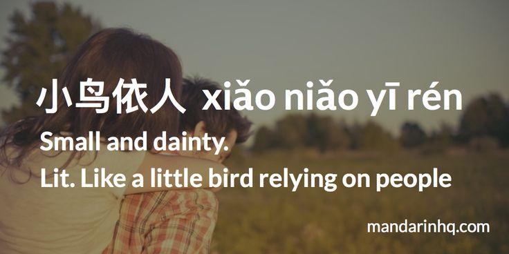 Examples: 当我靠在男朋友宽阔的肩膀时,有种小鸟依人的感觉。dāng wǒ kào zài nán péng yǒu kuān kuò de jiān bǎng shí, yǒu zhǒng xiǎo niǎo yī rén de gǎn jué. When I lean on my boyfriend's broad shoulders, I feel small and dainty. FOR MORE: https://mandarinhq.com/ #learnchinese #mandarinhq #chinesephrases #chineselessons #mandarinlessons #chineselanguage #chineseidioms #chineseculture #learnmandarin #chinesetones #chengyu