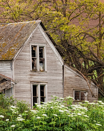 1800s Country Homes: 17 Best Images About 1800-1940 Vernacular And Folk