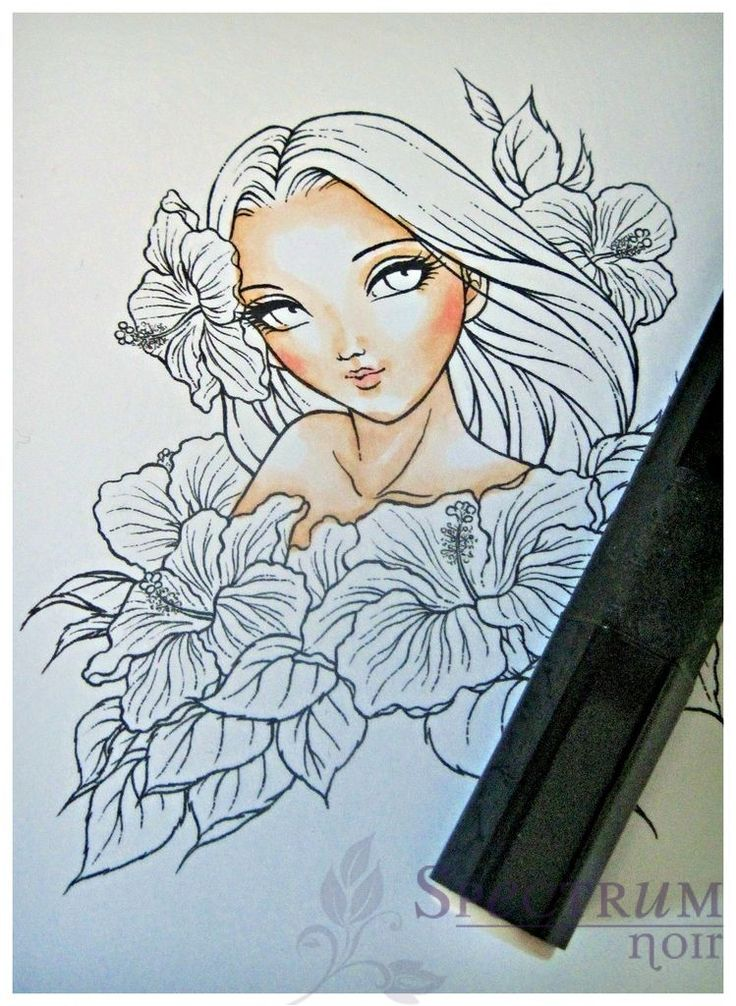 Adding Depth & Definition to the Face with Spectrum Noir Markers - Spectrum Noir Coloring System from Crafter's Companion