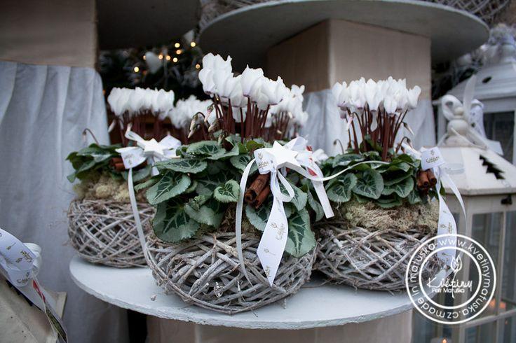 Kolekce | Vanoční kolekce | Květiny Petr Matuška Brno - dekorace, floristika…