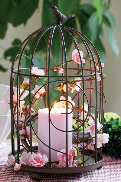 25 best ideas about bird cage decoration on pinterest birdcage decor bird - Decoration cage oiseau ...